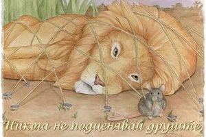 lyv_i_mishka_ne_podcenqvai_silata_na_slabiq